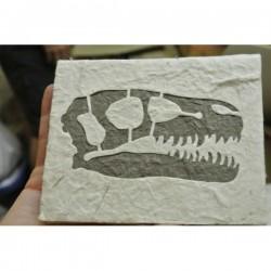 """Carnet """"T-rex"""""""